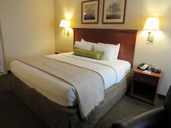 Studio Suite, 1 King Bed, Accessible, Non Smoking (Hearing)