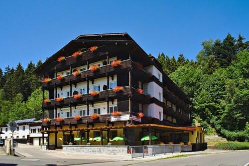 . Hotel am Steinbachtal