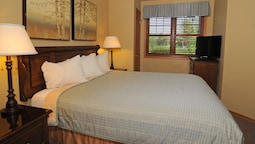 Premier Oda, 1 Yatak Odası