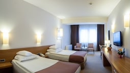 Superior Double Or Twin Room (incl. Free Sauna World)