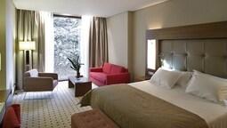Standard Tek Büyük Yataklı Oda (2ad)