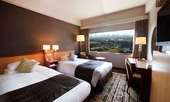 İki Ayrı Yataklı Oda (palace View)