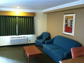 Studio Suite, 1 King Bed (Non-Smoking)