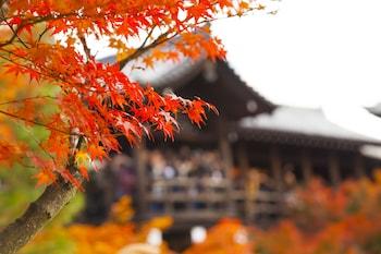 京都都市飯店