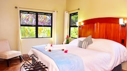 1 Bedroom Suite, River View