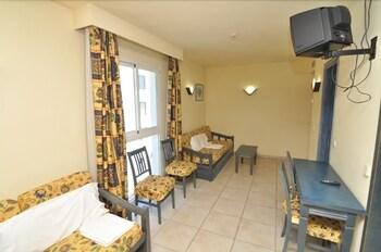 아파르타멘토스 센트럴 파크(Apartamentos Central Park) Hotel Image 30 - Living Room