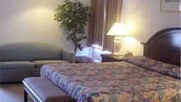 Standard Room, 1 King Bed, Smoking (non-smoking And Smoking Available)