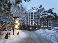 ヨンピョン リゾート ドラゴン バレー ホテル