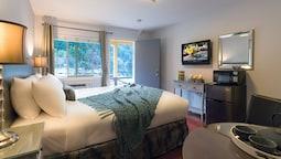 Standard Room, 1 King Bed, Lakeside