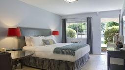 Standard Room, 1 King Bed, Refrigerator & Microwave, Mountainside