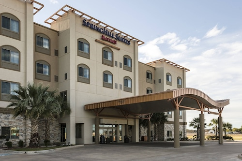 . SpringHill Suites Waco Woodway