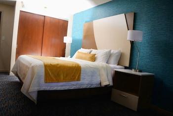 Standard Room, 1 King Bed, Refrigerator, Lake View