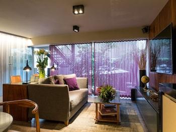 Hotel - Dominion Polanco