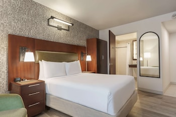 Room, Accessible, Non Smoking (Roll-in Shower)