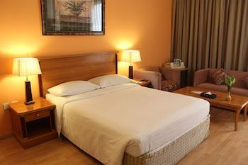 ル ロイヤル サルミヤ ホテル