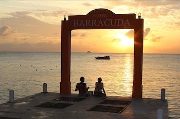 Hotel - Hotel Barracuda