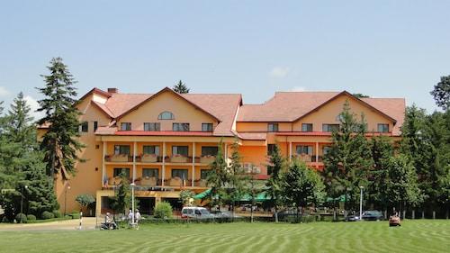 . Best Western Silva Hotel