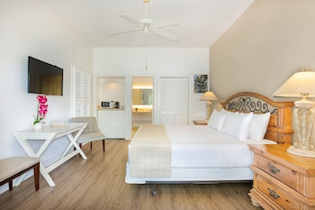 Mini Suite, 1 King Bed