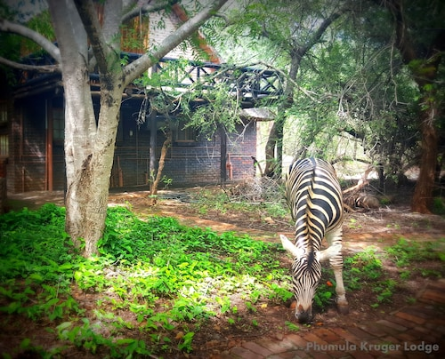 Phumula Kruger Lodge, Ehlanzeni