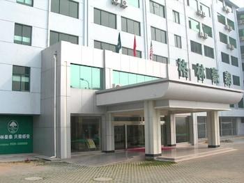 グリーンツリー イン武漢ハンコウ ジャンタン ホテル (格林豪泰武汉汉口江滩店)