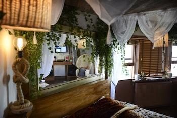 Double Room Single Use (Tropical Paradise)