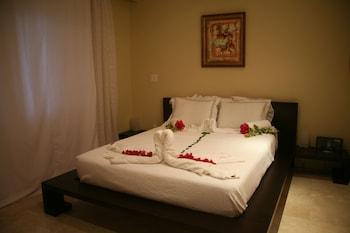 Studio, 1 Queen Bed