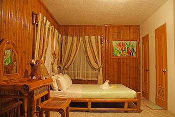 Hof Gorei Beach Resort Samal Room