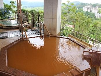 ARIMA GRAND HOTEL Public Bath