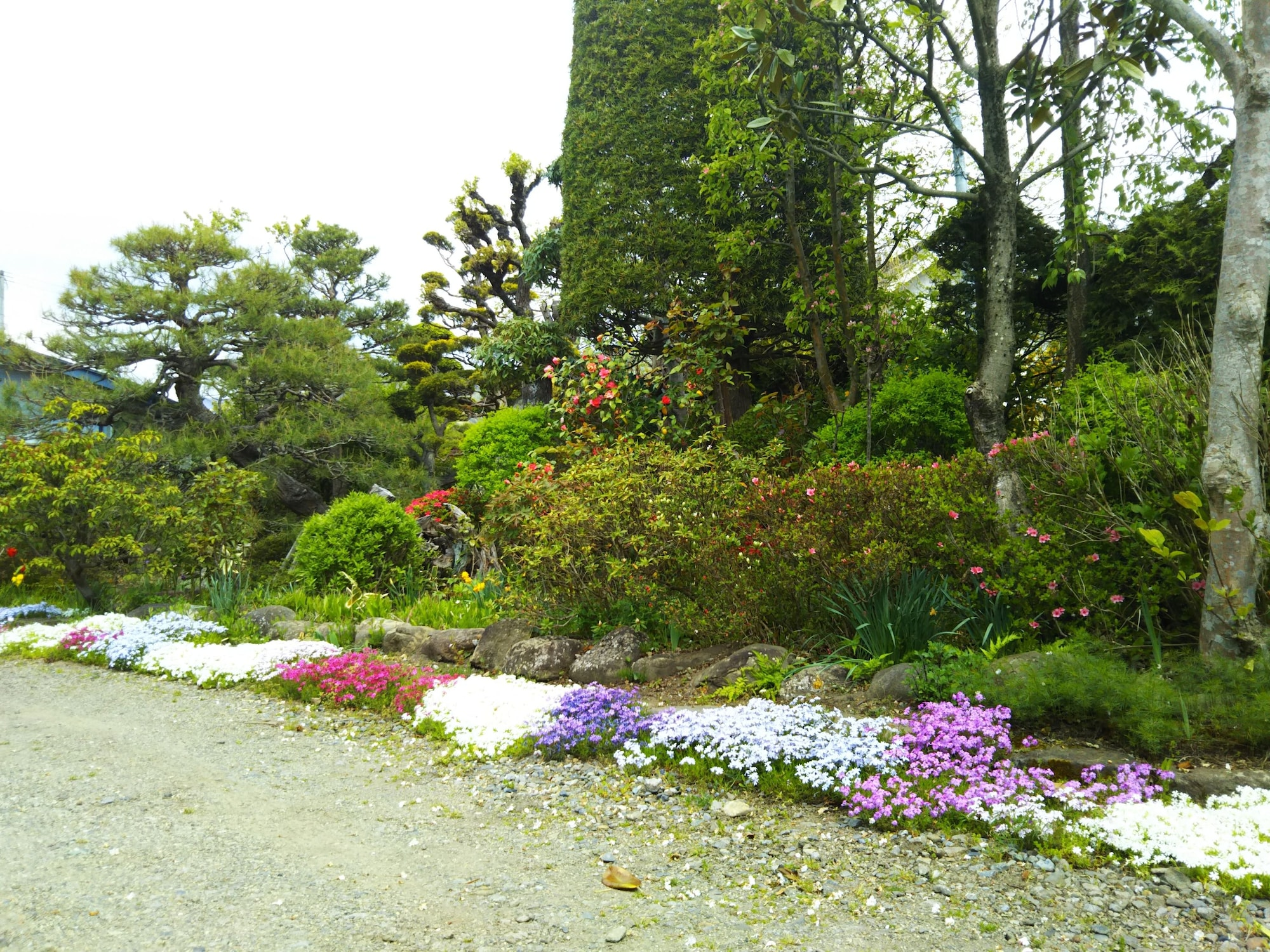 Guesthouse Nashimotoken, Takayama