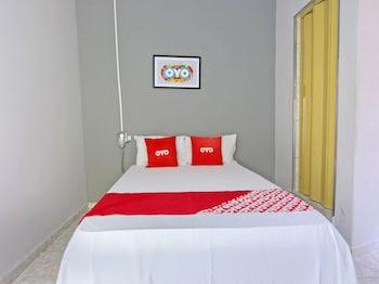 OYO 卡斯特羅阿爾威斯飯店 OYO Hotel Castro Alves