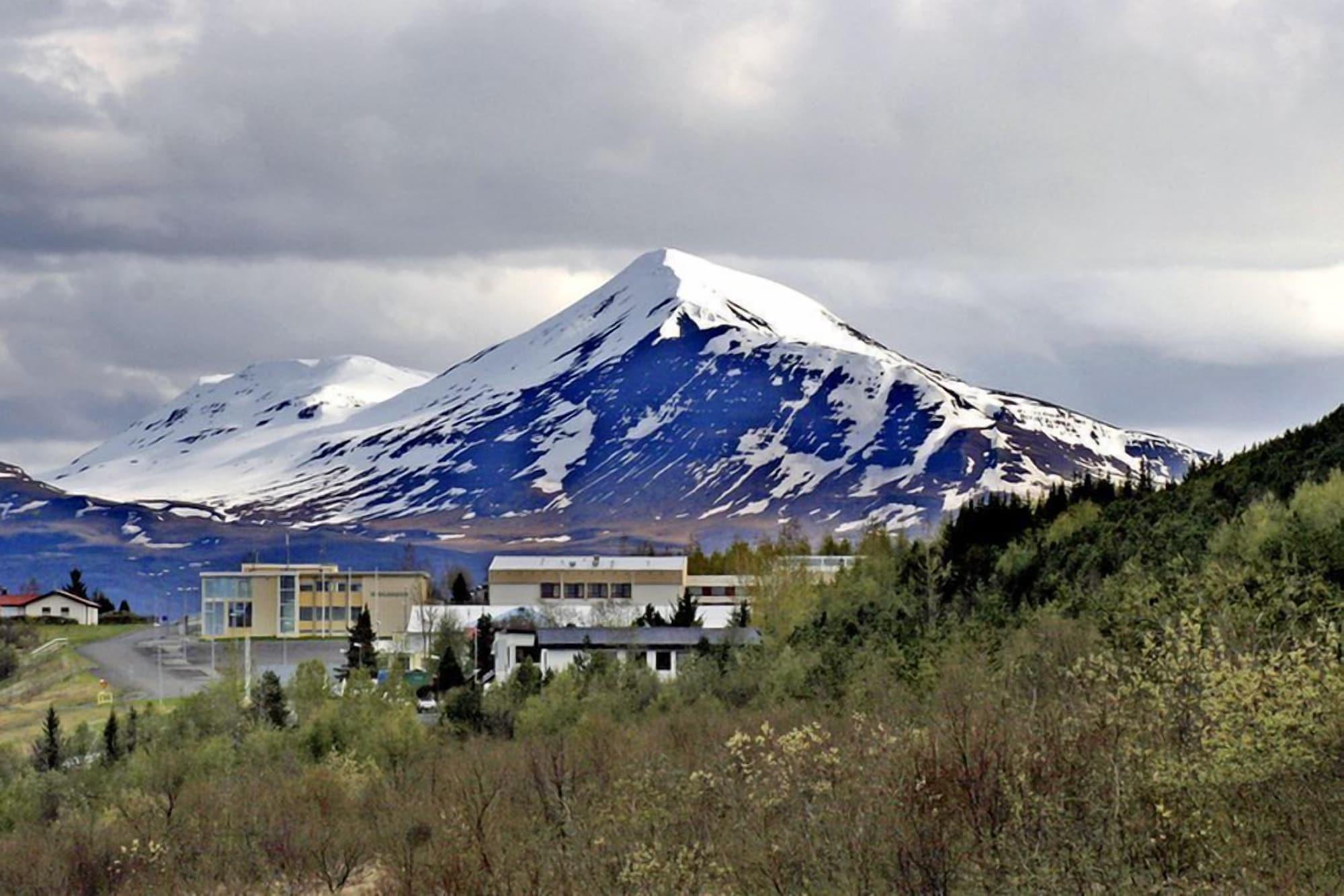 Hestasport Apartment, Sveitarfélagið Skagafjörður