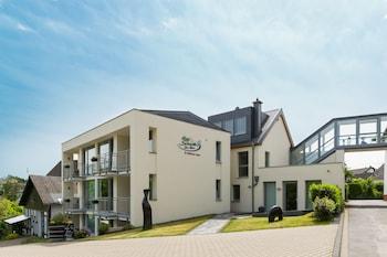 馬爾施耐德飯店 Hotel Schneider am Maar