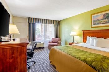 中央羅德威飯店 Rodeway Inn Central