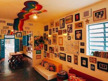 澤里伯南布哥青年旅舍及共享空間 Zili Pernambuco Hostel & CoWorking