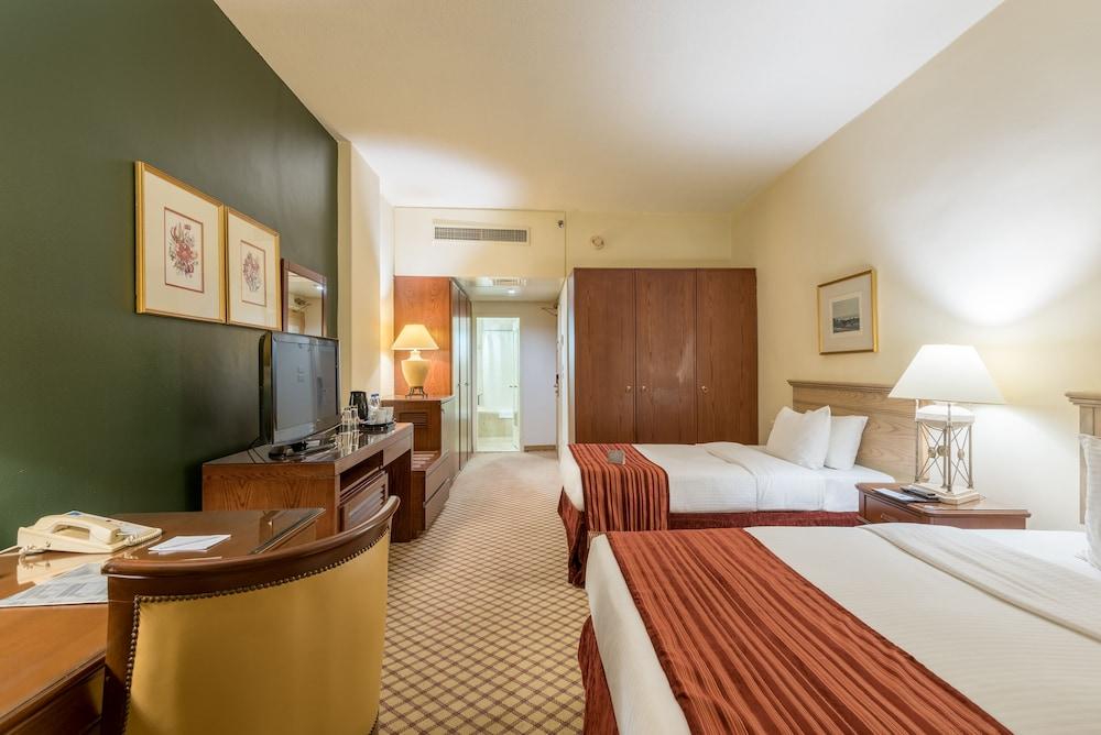 https://i.travelapi.com/hotels/46000000/45020000/45017300/45017212/97a173b8_z.jpg