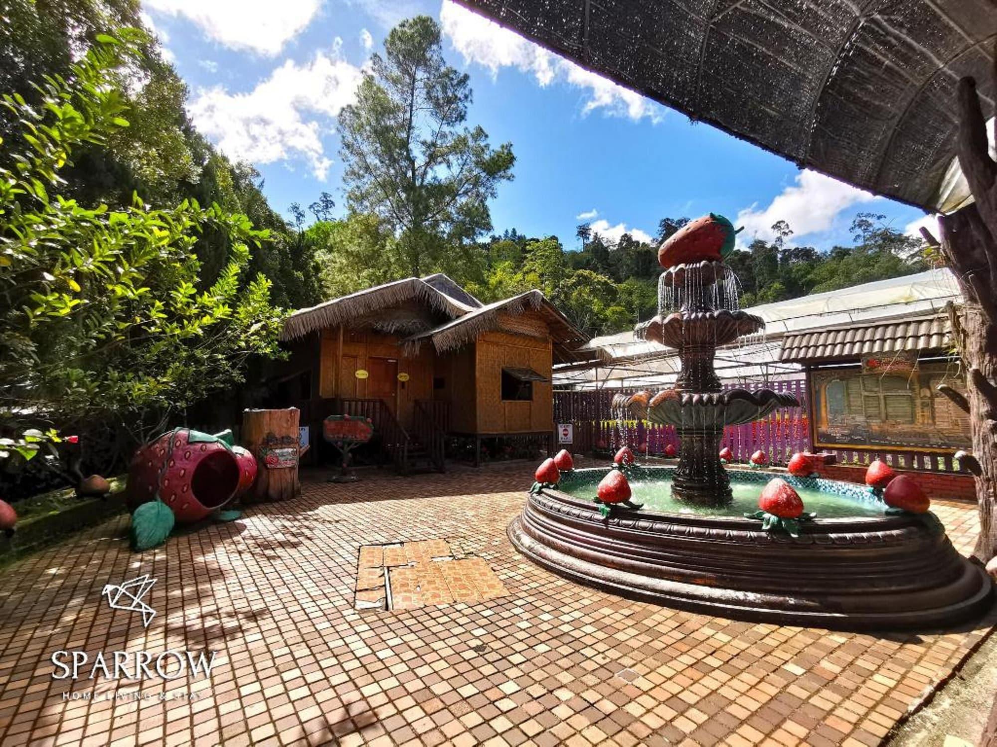 Sparrow Strawberry Farm Homes, Bentong