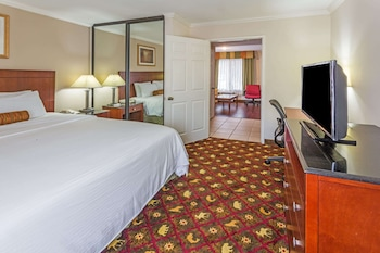 Suite, 1 King Bed, Non Smoking (One-Bedroom Suite)