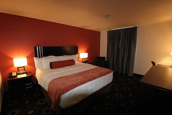 Standard Room, 1 King Bed (21+ only)