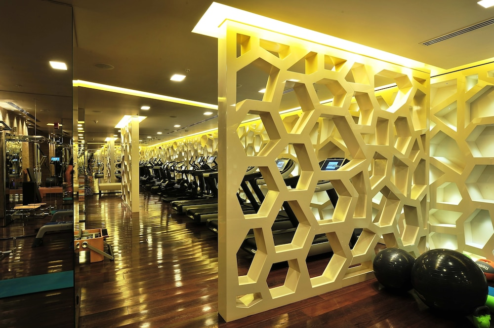 하얏트 센트릭 레번트 이스탄불(Hyatt Centric Levent Istanbul) Hotel Image 47 - Sports Facility