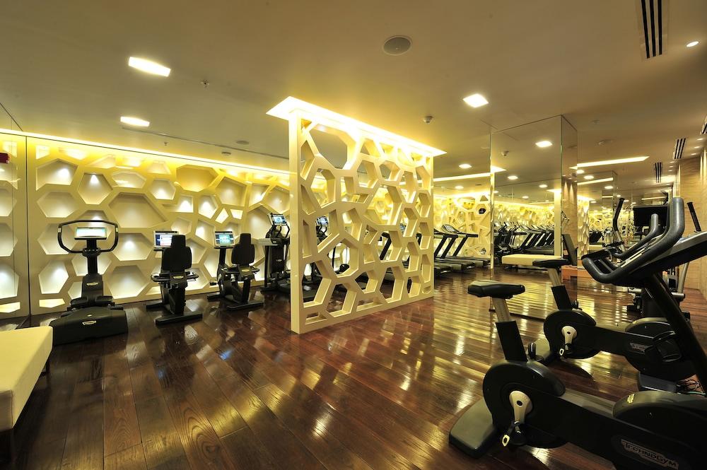 하얏트 센트릭 레번트 이스탄불(Hyatt Centric Levent Istanbul) Hotel Image 41 - Fitness Facility