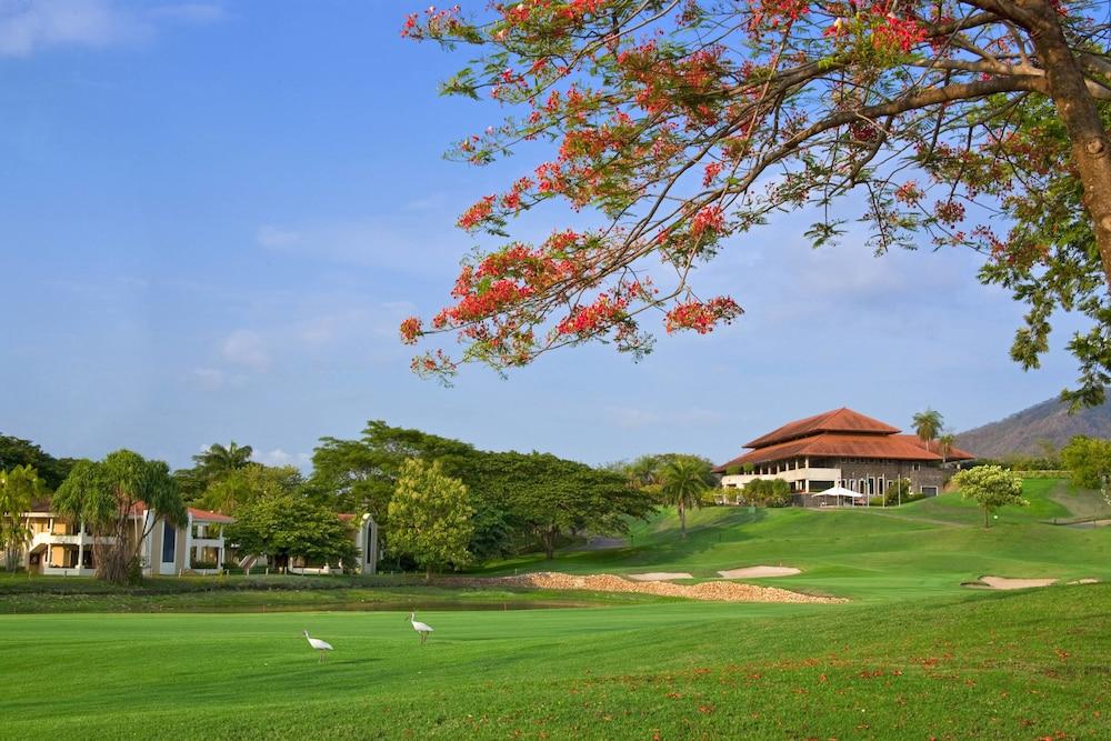 더 웨스틴 골프 리조트 & 스파, 플라야 콘찰 - 올 인클루시브(The Westin Golf Resort & Spa, Playa Conchal - All Inclusive) Hotel Image 42 - Golf