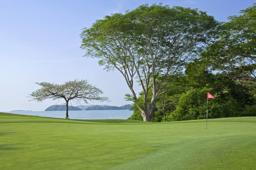 더 웨스틴 골프 리조트 & 스파, 플라야 콘찰 - 올 인클루시브(The Westin Golf Resort & Spa, Playa Conchal - All Inclusive) Hotel Image 43 - Golf