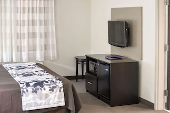 Suite, 1 King Bed with Sofa bed, Accessible, Non Smoking