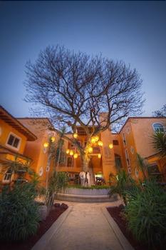 엘 찬테 스파 호텔(El Chante Spa Hotel) Hotel Image 43 - Hotel Front - Evening/Night