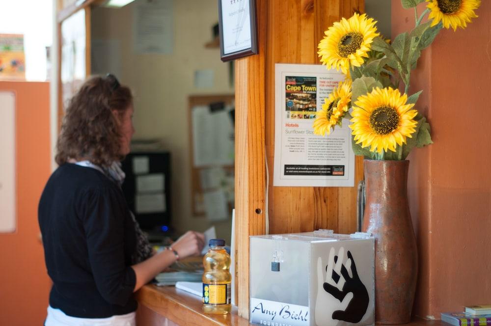 A Sunflower Stop - Hostel