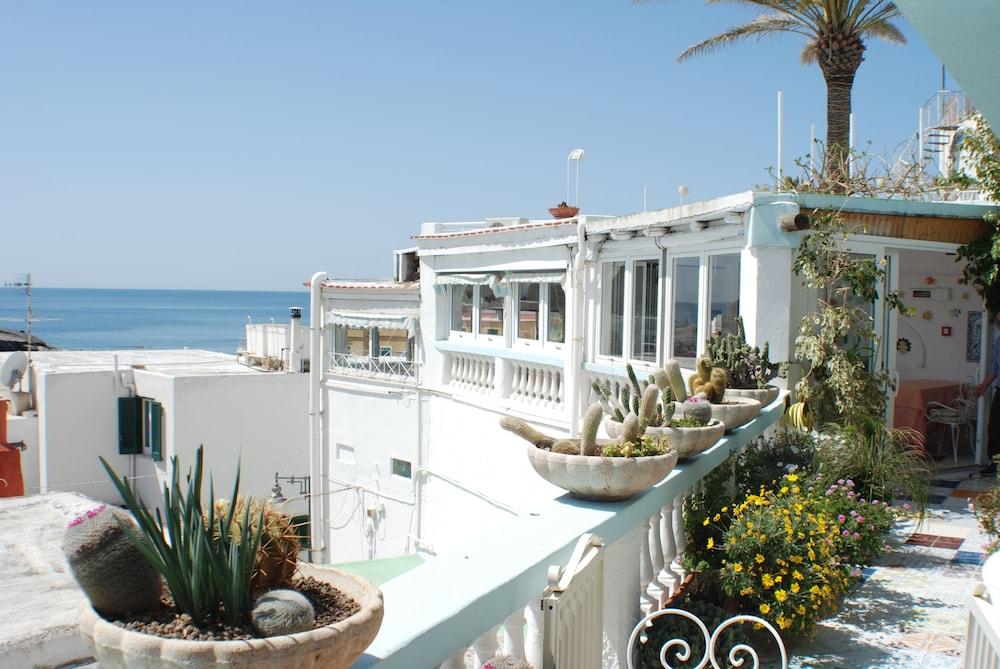 호텔 라 팔마(Hotel La Palma) Hotel Image 31 - Terrace/Patio