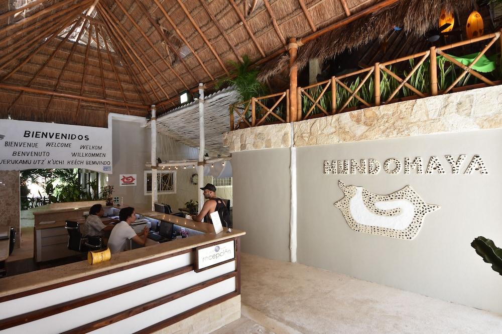 마야 브릭 호텔(Maya Bric Hotel) Hotel Image 3 - Reception