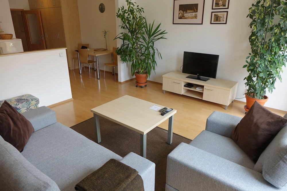 EEL 어코모데이션 브르노(EEL accommodation Brno) Hotel Image 18 - In-Room Amenity