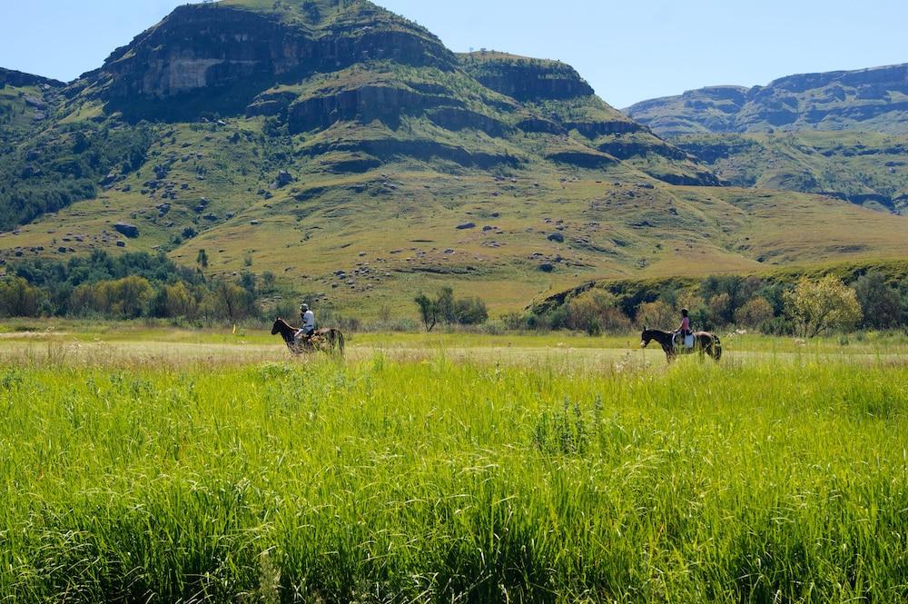 프리미어 리조트 사니 패스(Premier Resort Sani Pass) Hotel Image 21 - Horse Riding