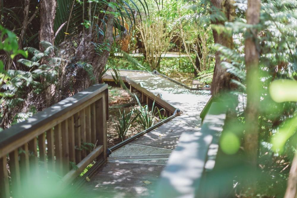 탕기아로 키위 리트리트(Tangiaro Kiwi Retreat) Hotel Image 22 - Hiking